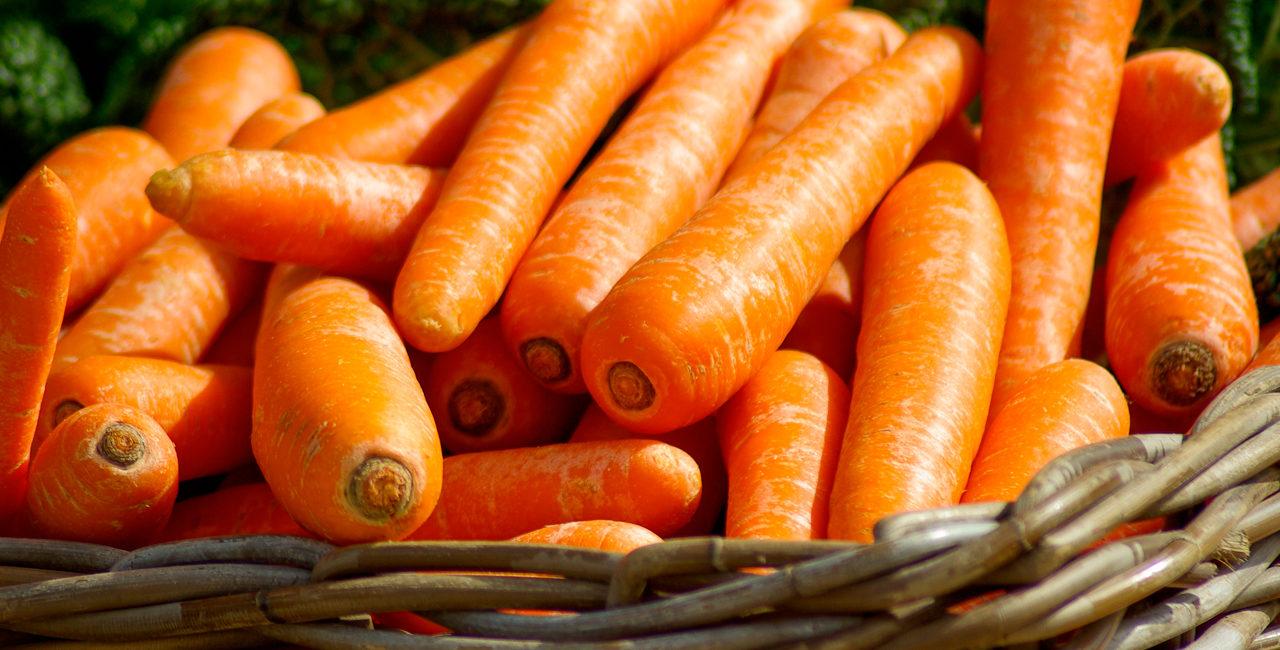 slide_carote_cesto